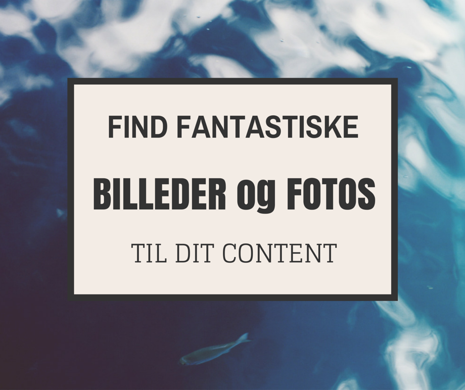 Her finder du fantastiske fotos og billeder til dit content
