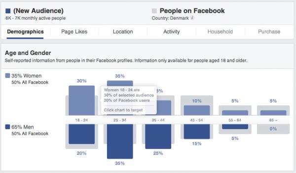 Facebook målgruppe indsigter