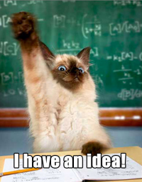 Kat har en god ide