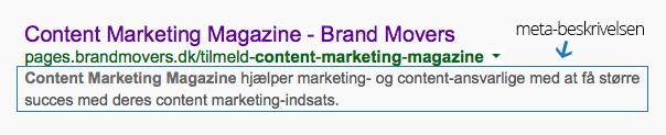 meta-beskrivelse-google.png